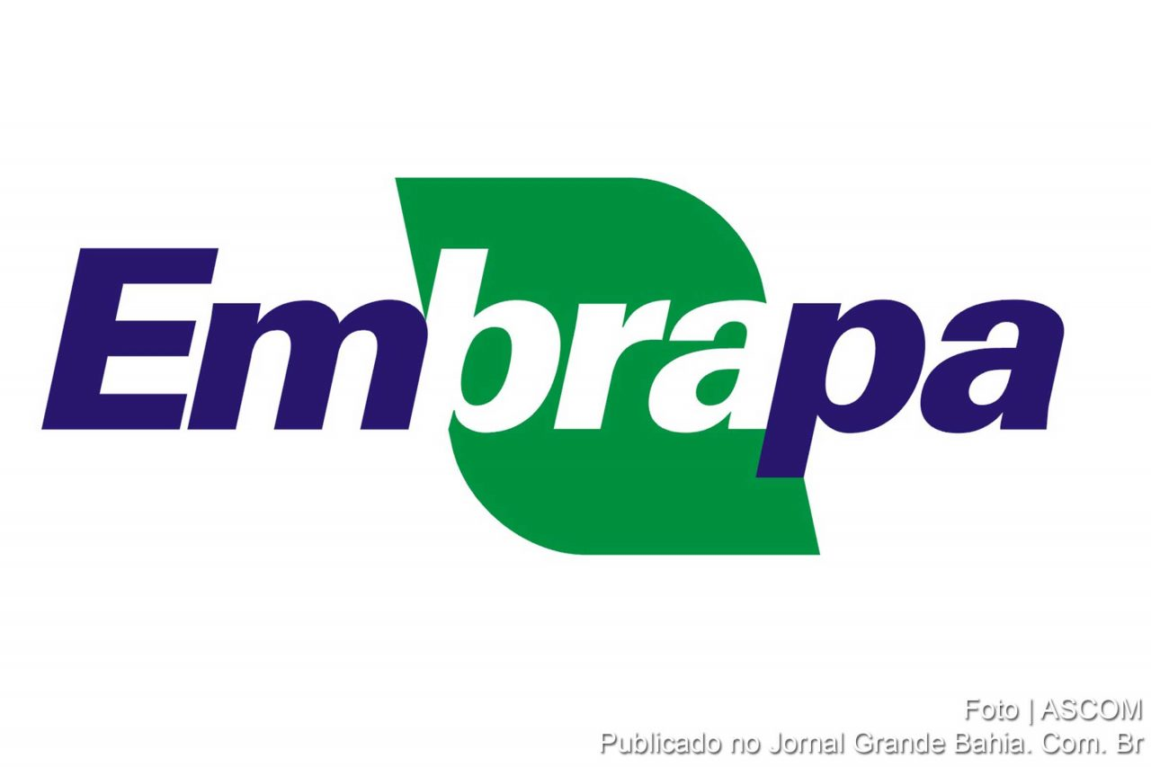 embrapa-3-1280x853.jpg