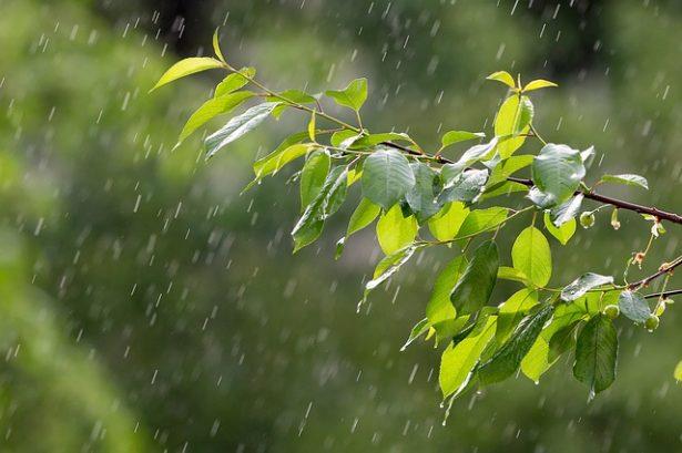 rain-3411982_640