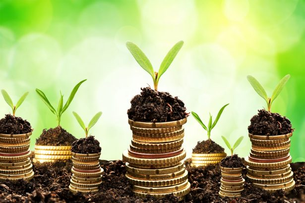 land-investment-1-e1528893143224
