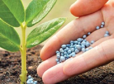 659-el-uso-de-fertilizantes-sobrepasara-los-200-millones-de-toneladas1-300x300.3.jpg
