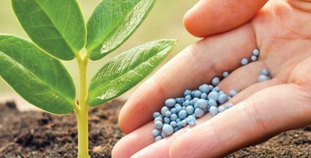 812-el-uso-de-fertilizantes-sobrepasara-los-200-millones-de-toneladas1-e1524670774380