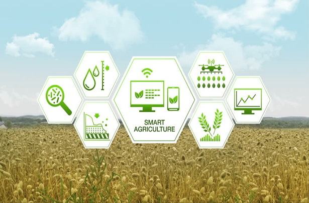 Agricultura-4
