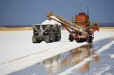 Dampier-salt-390x257.jpg
