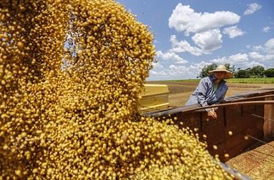 Brasil-controla-mais-de-50-da-exportacao-mundial-de-soja-390x257.jpg
