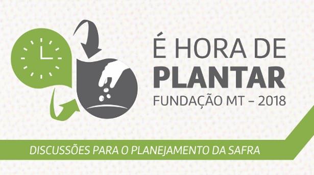 e-hora-de-plantar-615x377
