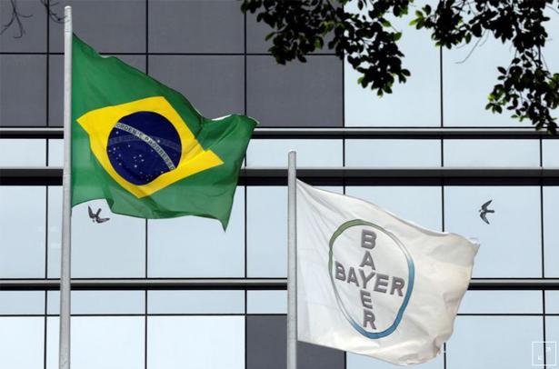 Bayer-615x406