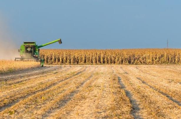 colheita-soja-lavoura-plantacao-agricultura-commodities-silos-615x406